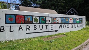 Make a donation to Blarbuie Woodland