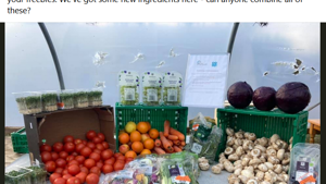 MS Centre joins food share network to help reduce food waste in Mid Argyll